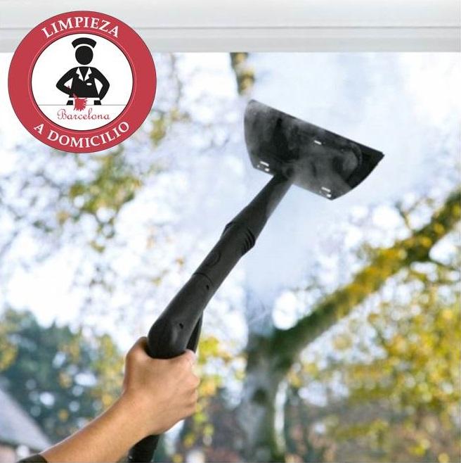 Vaporeta dom stica limpiar con vaporeta limpieza a for Limpieza de cristales a domicilio